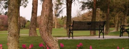 Denman Park 2